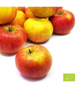 Eko jabolka Topaz 9 kg (Eko kmetija Podgrajšek)
