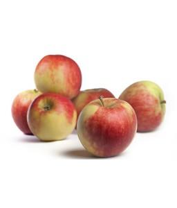 Jabolka Elstar 9 kg (Pohorka z.o.o.)