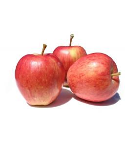 Jabolka Gala 9 kg (Pohorka z.o.o.)