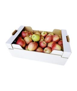 Jabolka Gala - 14 kg (Kmetija Sajko)
