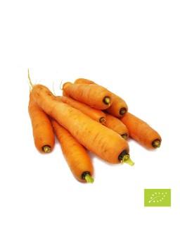 Eko korenje 1 kg (Eko pridelava zelenjave Sreš)